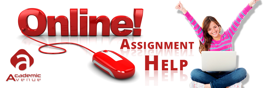 statistics assignment help review